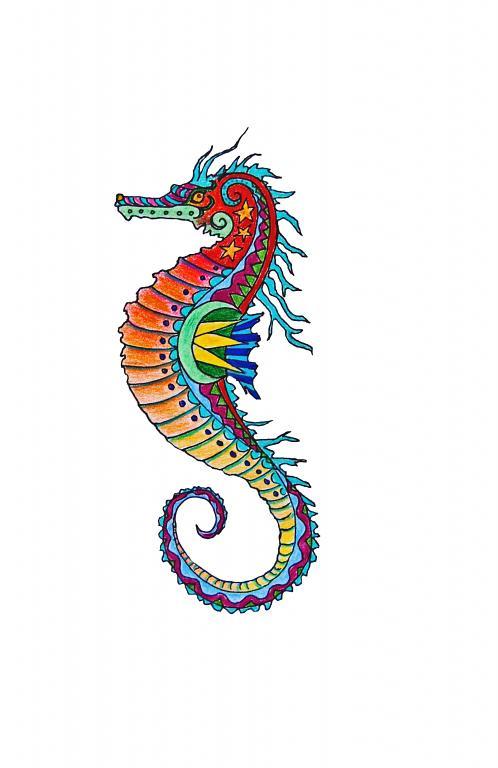 Colorful Seahorse Drawing | www.pixshark.com - Images ...